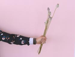 Acheter Brin de Pavot naturel - fleur séchée - 0,89€ en ligne sur La Petite Epicerie - Loisirs créatifs