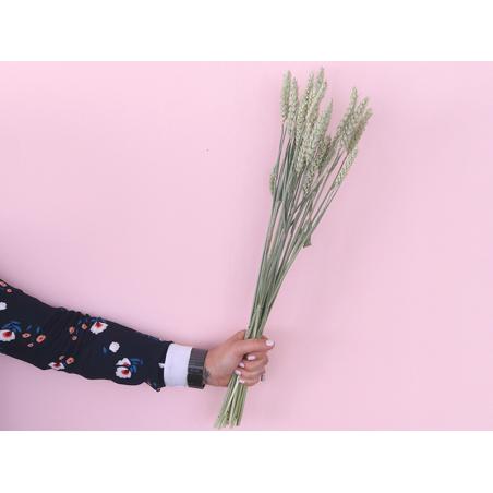 Acheter Brin de blé naturel - fleur séchée - 0,49€ en ligne sur La Petite Epicerie - Loisirs créatifs