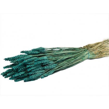 Acheter Brin de Triticum vert pétrole - fleur séchée - 0,39€ en ligne sur La Petite Epicerie - 100% Loisirs créatifs