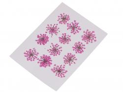 Acheter Planche de 12 fleurs pressées - fuchsia - 4,59€ en ligne sur La Petite Epicerie - Loisirs créatifs