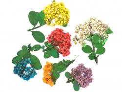 Acheter Planche de 6 fleurs - 6 couleurs - 4,59€ en ligne sur La Petite Epicerie - 100% Loisirs créatifs