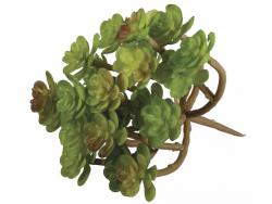 Acheter Succulente - Sedum vert - plante artificielle - 4,39€ en ligne sur La Petite Epicerie - 100% Loisirs créatifs