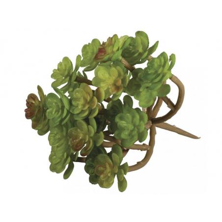 Acheter Succulente - Sedum vert - plante artificielle - 4,39€ en ligne sur La Petite Epicerie - Loisirs créatifs