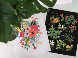 Acheter Affiche 20 x 25 cm - Herbier - 28,49€ en ligne sur La Petite Epicerie - 100% Loisirs créatifs