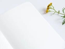 Acheter Carnet A5 à feuilles vierges Alice - Feuilles allongées - 8,49€ en ligne sur La Petite Epicerie - Loisirs créatifs