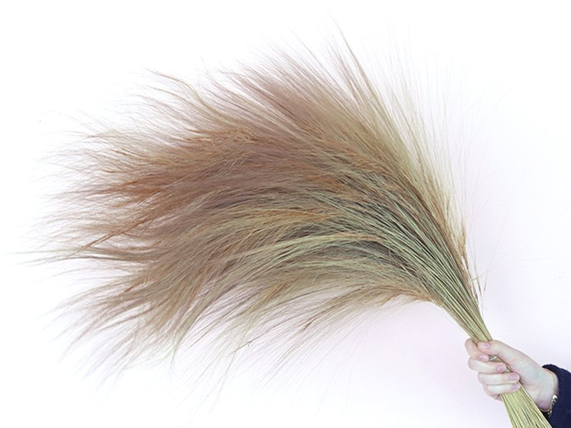 Acheter Brin de Barba de Bode - fleur séchée - 0,69€ en ligne sur La Petite Epicerie - Loisirs créatifs