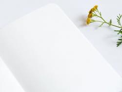 Acheter Carnet A6 à feuilles vierges Arsène - Toucans - 4,99€ en ligne sur La Petite Epicerie - Loisirs créatifs