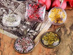 Acheter Planche de 12 fleurs pressées - blanc - 4,59€ en ligne sur La Petite Epicerie - 100% Loisirs créatifs