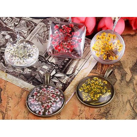 Acheter Planche de 12 fleurs pressées - blanc - 4,59€ en ligne sur La Petite Epicerie - Loisirs créatifs