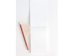 Acheter Calepin plumes bleu Season Paper - 6,99€ en ligne sur La Petite Epicerie - 100% Loisirs créatifs