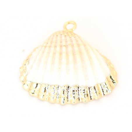 Acheter Pendentif coquillage coquille 30 mm- bordure dorée - 2,59€ en ligne sur La Petite Epicerie - Loisirs créatifs