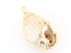 Acheter Pendentif coquillage spirale 20 mm - bordure dorée - 1,79€ en ligne sur La Petite Epicerie - 100% Loisirs créatifs