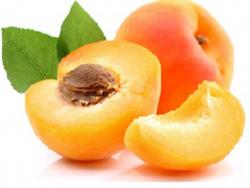 Acheter Huile de noyau d'abricot BIO - AB - 50 ml - 4,69€ en ligne sur La Petite Epicerie - Loisirs créatifs