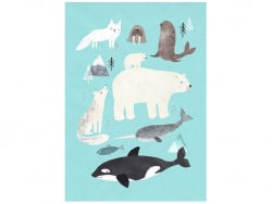 Acheter Carte postale - Animaux de l'Arctique - 1,29€ en ligne sur La Petite Epicerie - Loisirs créatifs