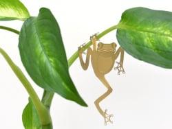Acheter Bijou pour plantes - Grenouille - 7,99€ en ligne sur La Petite Epicerie - Loisirs créatifs
