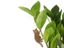 Acheter Bijou pour plantes - Raton Laveur - 7,99€ en ligne sur La Petite Epicerie - 100% Loisirs créatifs