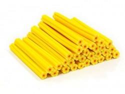 Cane fleur jaune soleil