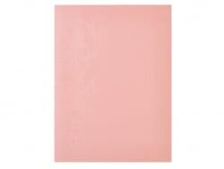 Acheter Plaque de gomme à graver pour tampon - rose saumon - 8,99€ en ligne sur La Petite Epicerie - Loisirs créatifs