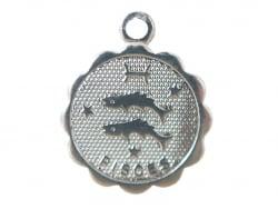 Acheter Médaille astro flash argent 925 - Poissons - 3,49€ en ligne sur La Petite Epicerie - Loisirs créatifs