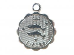 Acheter Médaille astro plaqué argent 925 - Poissons - 3,49€ en ligne sur La Petite Epicerie - Loisirs créatifs