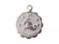 Acheter Médaille astro plaqué argent 925 - Capricorne - 3,49€ en ligne sur La Petite Epicerie - Loisirs créatifs