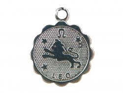 Acheter Médaille astro plaqué argent 925 - Lion - 3,49€ en ligne sur La Petite Epicerie - Loisirs créatifs