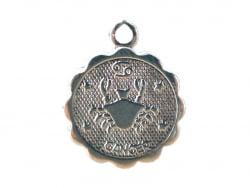 Acheter Médaille astro flash argent 925 - Cancer - 3,49€ en ligne sur La Petite Epicerie - Loisirs créatifs