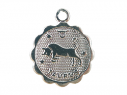 Acheter Médaille astro plaqué argent 925 - Taureau - 3,49€ en ligne sur La Petite Epicerie - Loisirs créatifs