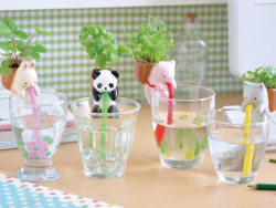 """Acheter Mini kit """"fais pousser ta plante - basilic"""" petit panda qui boit à la paille - 14,99€ en ligne sur La Petite Epiceri..."""
