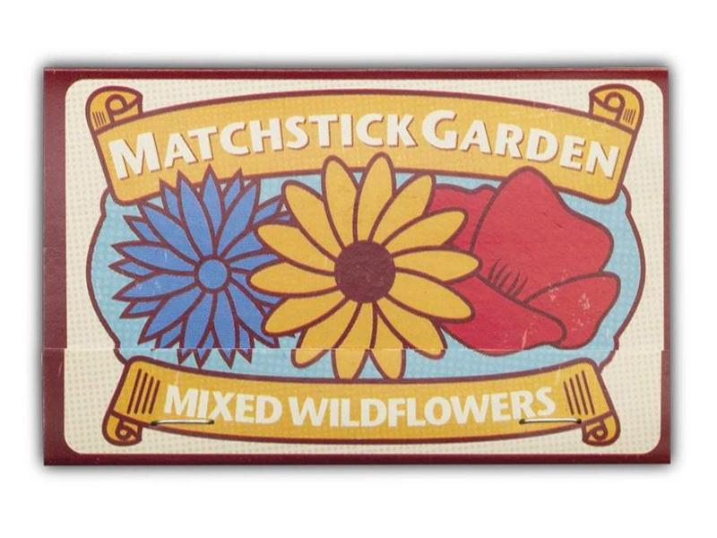 Acheter Allumettes graines de fleurs sauvages à faire pousser - 2,59€ en ligne sur La Petite Epicerie - 100% Loisirs créatifs