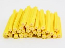 Cane étoile jaune rayures