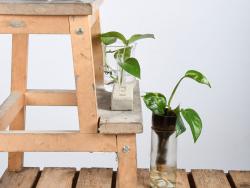 Acheter Pot avec système d'auto-arrosage - 7,49€ en ligne sur La Petite Epicerie - Loisirs créatifs