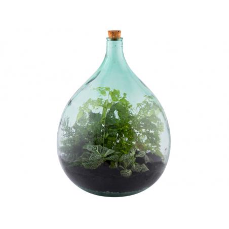 Acheter Bouteille terrarium 35 L set - 69,99€ en ligne sur La Petite Epicerie - Loisirs créatifs