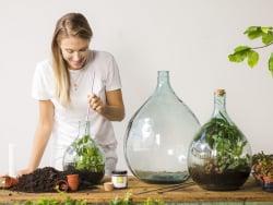 Acheter Set d'outils de jardin d'intérieur - 20,99€ en ligne sur La Petite Epicerie - 100% Loisirs créatifs