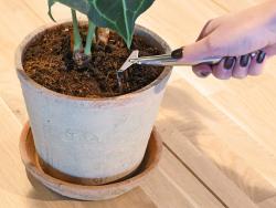 Acheter Set d'outils de jardin d'intérieur - 16,79€ en ligne sur La Petite Epicerie - Loisirs créatifs