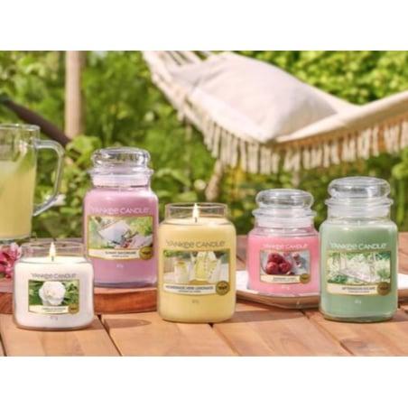 Acheter Bougie Yankee Candle - Jungle tropicale / Tropical Jungle - Moyenne Jarre - 21,35€ en ligne sur La Petite Epicerie -...