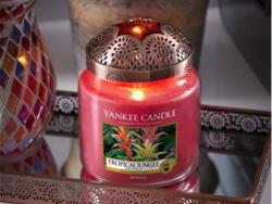 Acheter Bougie Yankee Candle - Jungle tropicale / Tropical Jungle - Moyenne Jarre - 24,89€ en ligne sur La Petite Epicerie -...