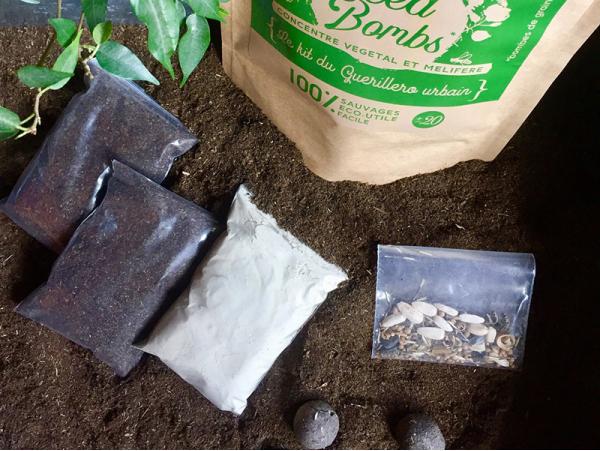 Acheter Kit DIY - Fabriquer des bombes de graines - 12,89€ en ligne sur La Petite Epicerie - Loisirs créatifs