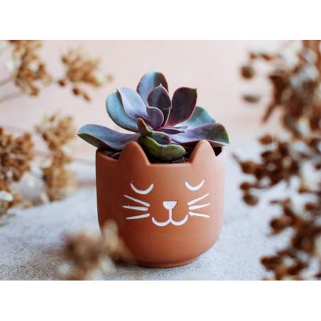 Acheter Petit pot à plante Terracotta- Chat - 5,19€ en ligne sur La Petite Epicerie - Loisirs créatifs