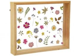 Acheter Cadre flottant herbier - 26 x 21 cm - 19,99€ en ligne sur La Petite Epicerie - Loisirs créatifs