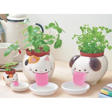Acheter Papa Peropon - Panda - Basilic - 18cm - 32,99€ en ligne sur La Petite Epicerie - Loisirs créatifs