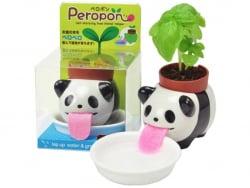 Acheter Peropon - Panda - Basilic - 5,5 x 7 cm - 13,99€ en ligne sur La Petite Epicerie - Loisirs créatifs