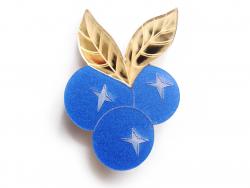 Acheter Kit broche fruit - Baies - 9,99€ en ligne sur La Petite Epicerie - Loisirs créatifs