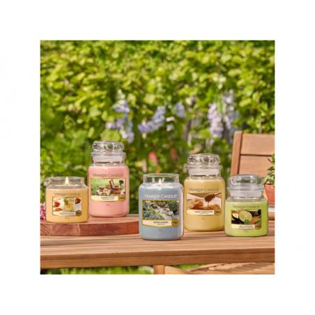 Acheter Bougie Yankee Candle - Alvéoles de miel / Sweet honeycomb - Bougie votive - 2,69€ en ligne sur La Petite Epicerie - ...