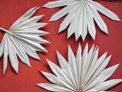 Acheter Feuille de palmier séchée / feuille de palme naturelle - 1,89€ en ligne sur La Petite Epicerie - Loisirs créatifs