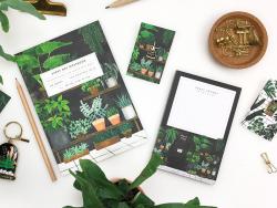 Acheter Carte et enveloppe - Ficus - 3,49€ en ligne sur La Petite Epicerie - Loisirs créatifs