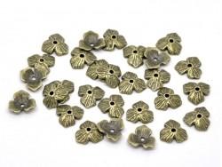 Coquille jolie fleur - couleur bronze