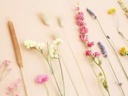 Acheter Bouquet de fleurs séchées - coloris multicolore - taille mini - 11,99€ en ligne sur La Petite Epicerie - Loisirs cré...