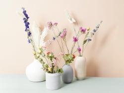 Acheter Fleurs séchées présentées dans un bocal - multicolores - 15,99€ en ligne sur La Petite Epicerie - Loisirs créatifs