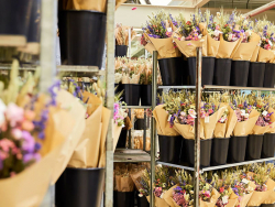 Acheter Vase bougeoir à fleurs séchées - bougie bleu - gris - 9,99€ en ligne sur La Petite Epicerie - Loisirs créatifs